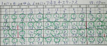 アネモネステークス.jpg
