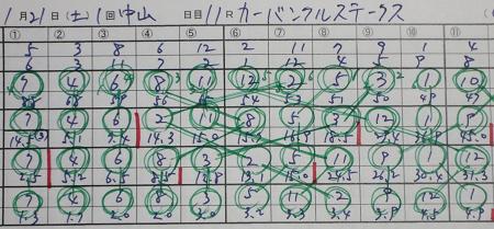 カーバンクルステークス.jpg