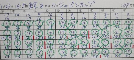 ジャパンカップ.jpg