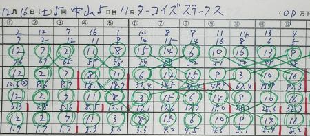 ターコイズス-クス.jpg