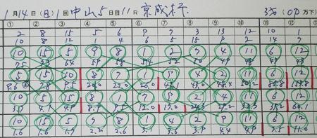 京成杯.jpg