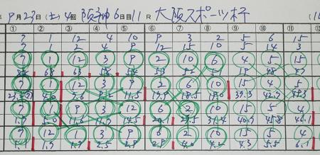 大阪スポーツ杯.jpg