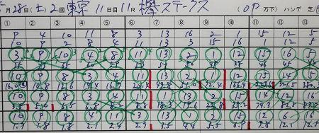 欅ステークス.jpg