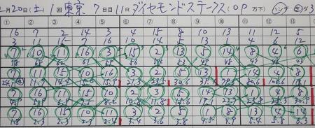 ダイヤモンドステークス.jpg