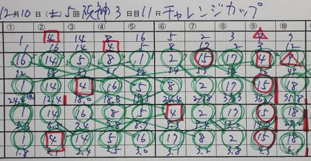 チャレンジカップ 結果.jpg