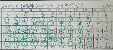 マーメイドステークス.jpg