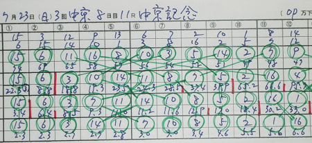 中京記念.jpg