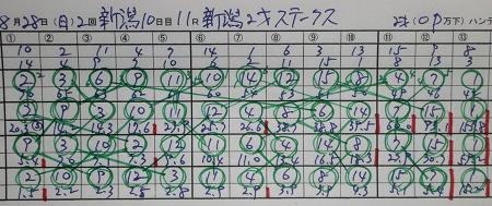 新潟2歳ステ-クス.jpg