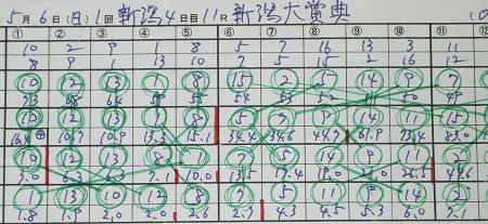 新潟大賞典.jpg